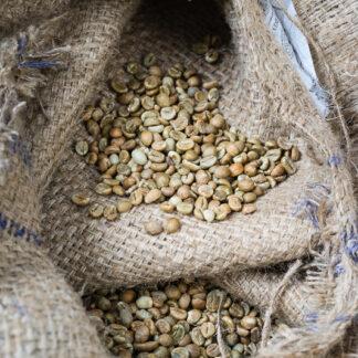 groen koffie honduras