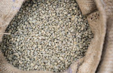 groene koffie honduras