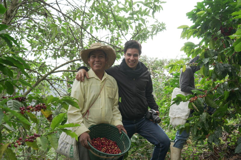 Koffieplantage chiapas mexico