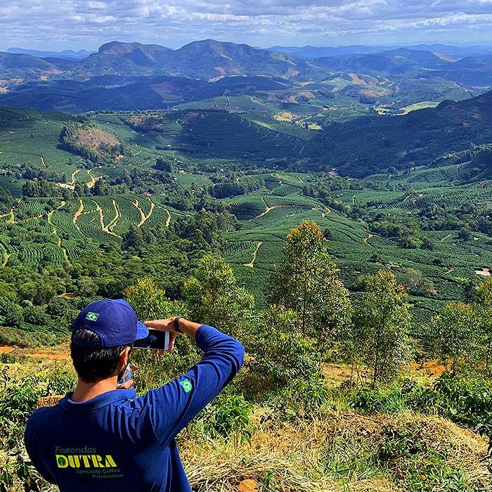 Brazilië catuai koffie bio